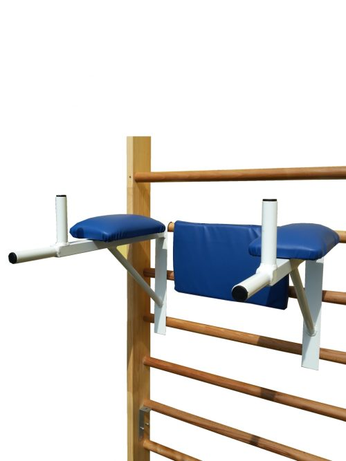 parallel bars for wall bar