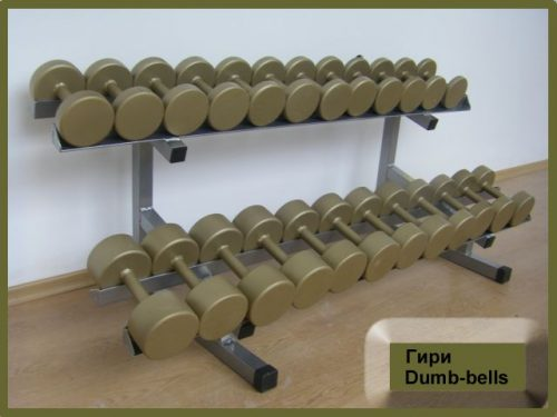 One piece dumbbells-0