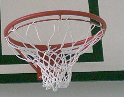 Professional basketball net-0